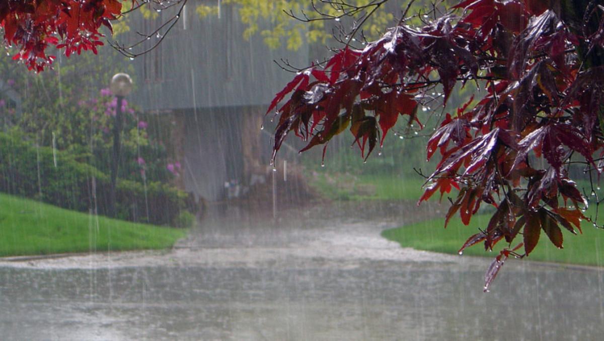 A Misty, Rainy Day