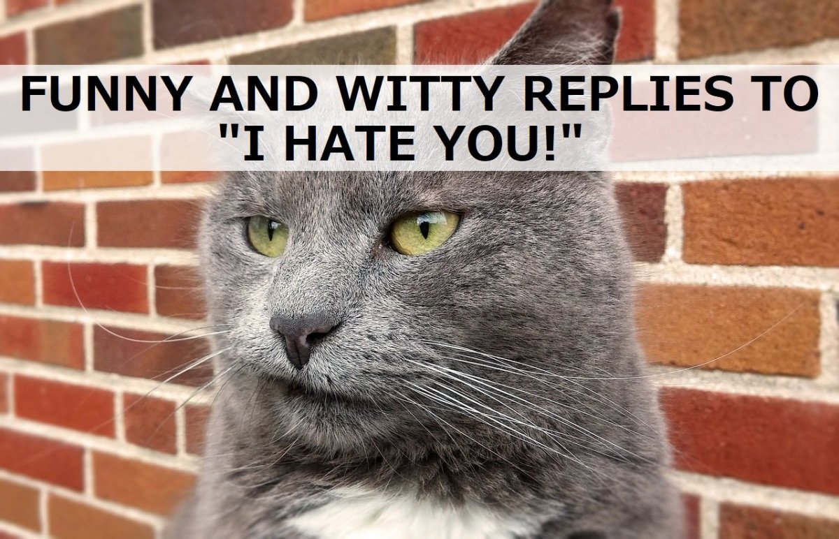 "Funny and Witty Replies to ""I Hate You!"""