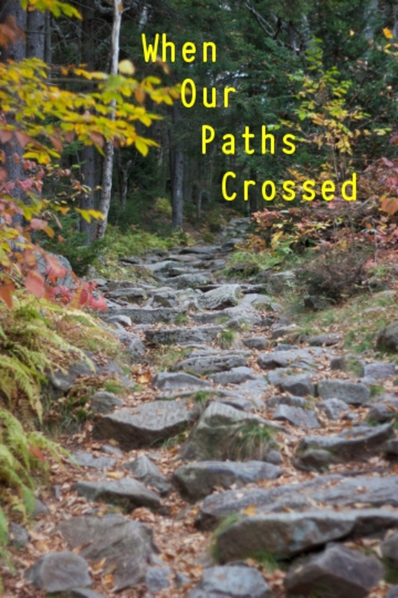 Poem: When Our Paths Crossed