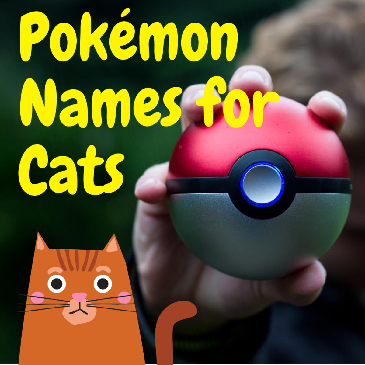 150 Pokémon Cat Names With Nicknames