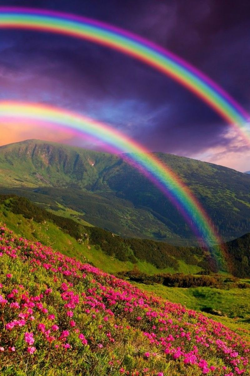 Rainbow Written By Mom