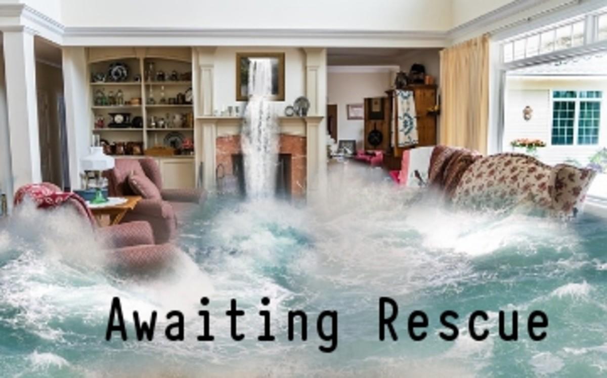 Poem:  Awaiting Rescue