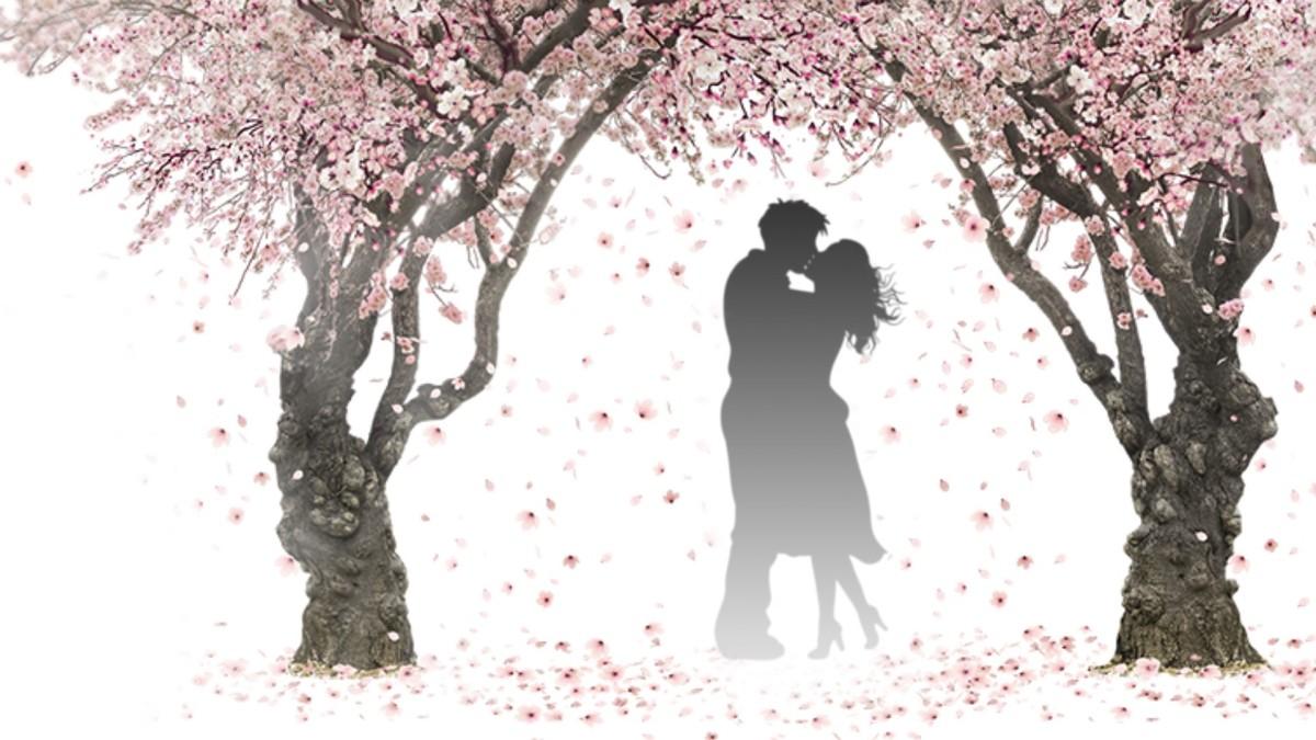 Love Beyond Boundaries: A Poem