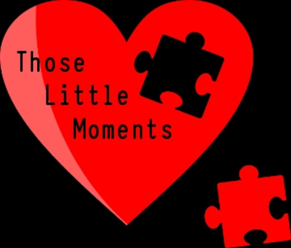 Poem:  Those Little Moments