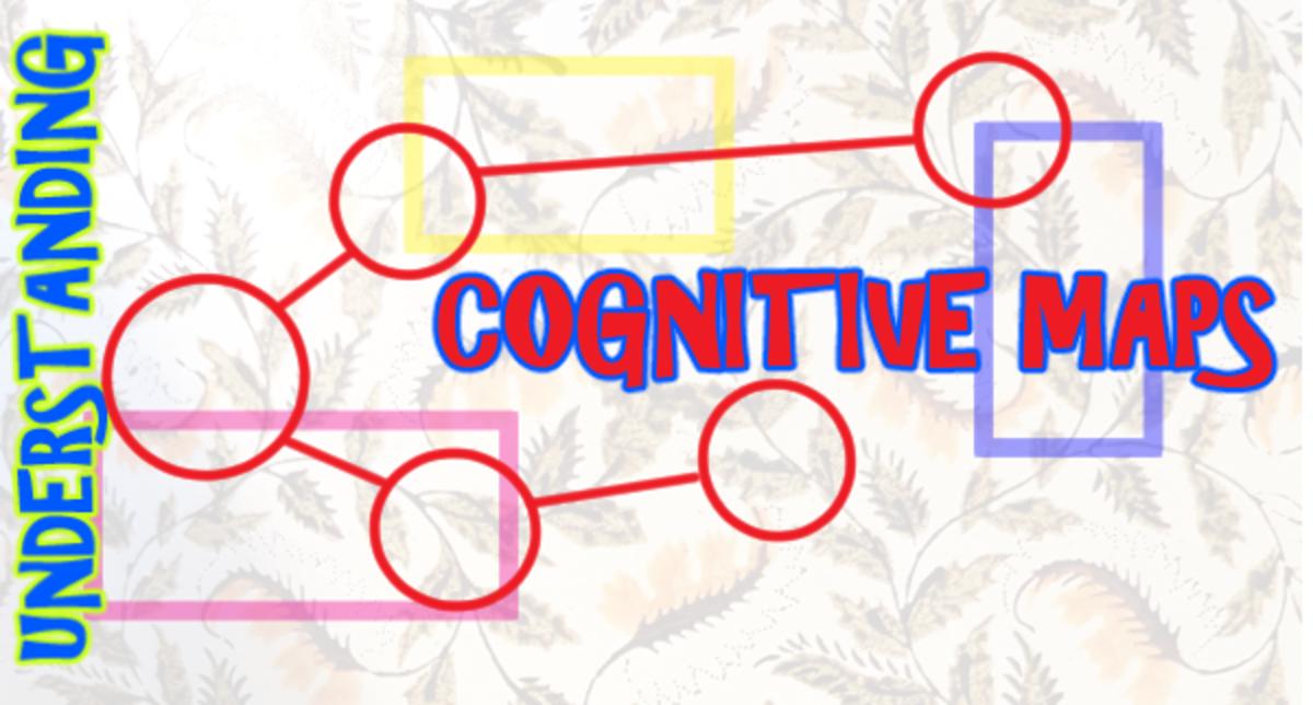 Understanding Cognitive Maps