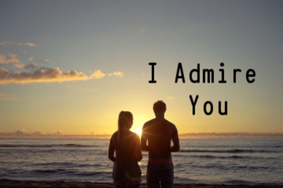 Poem:  I Admire You For