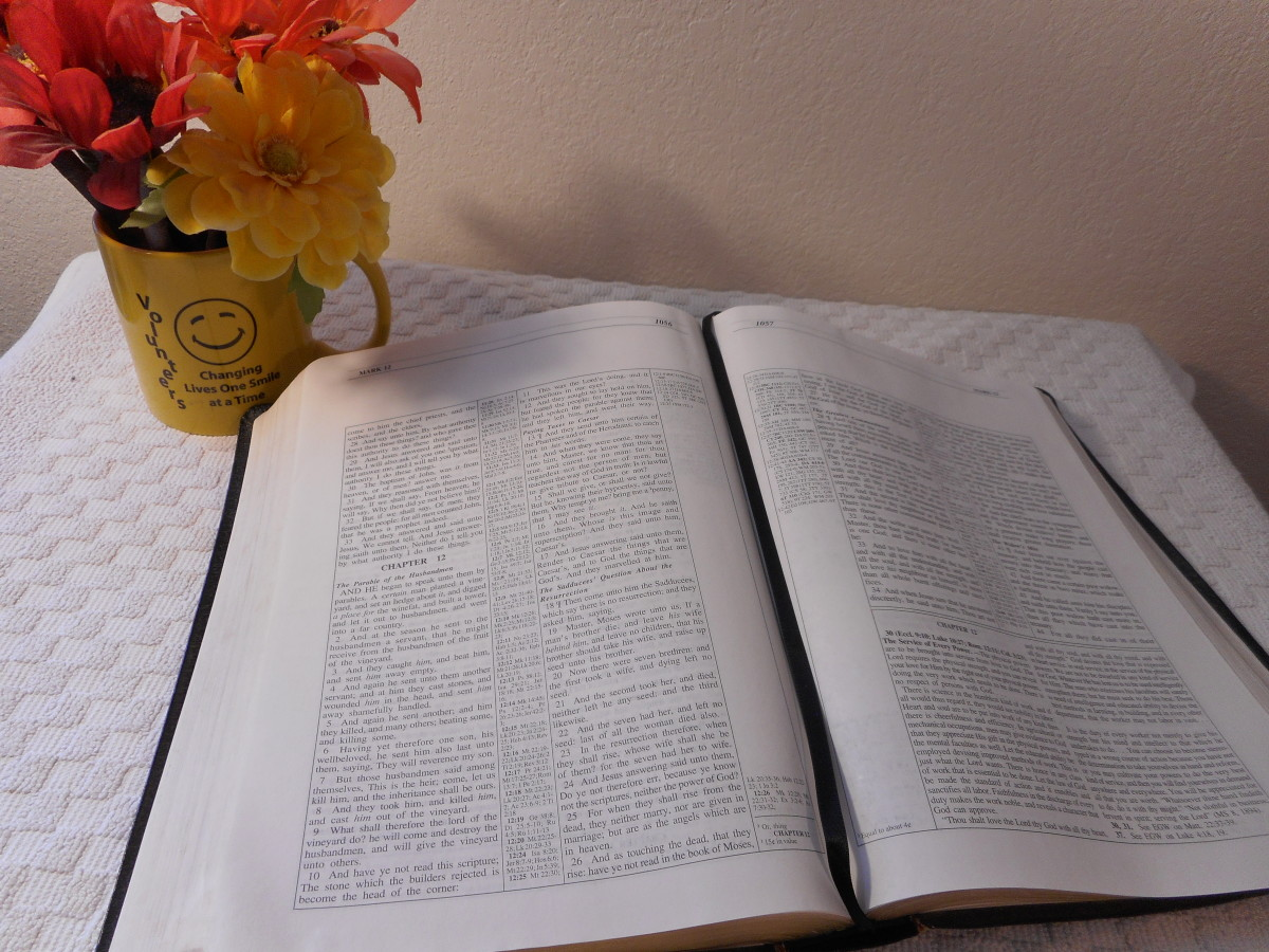 7 Different Leather Binding Covers for Bibles