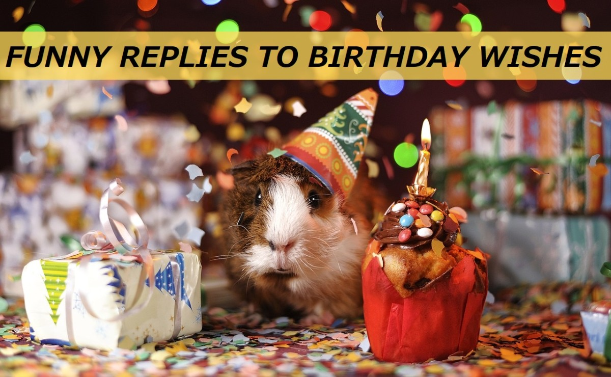 50+ Funny Replies to Birthday Wishes