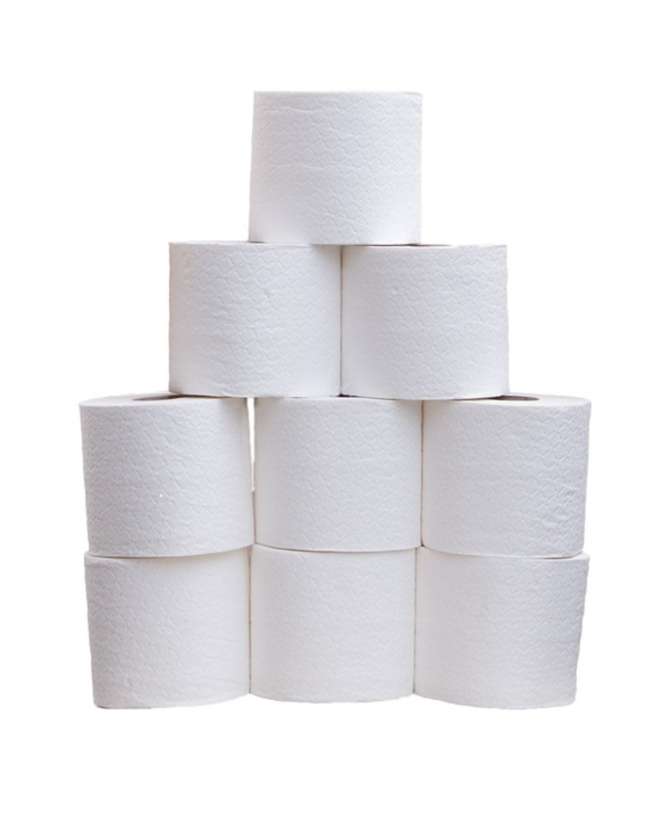 The Toilet Paper Story