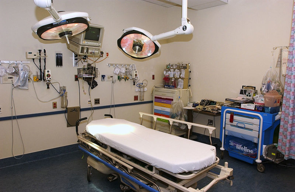 ode-to-the-gallbladder