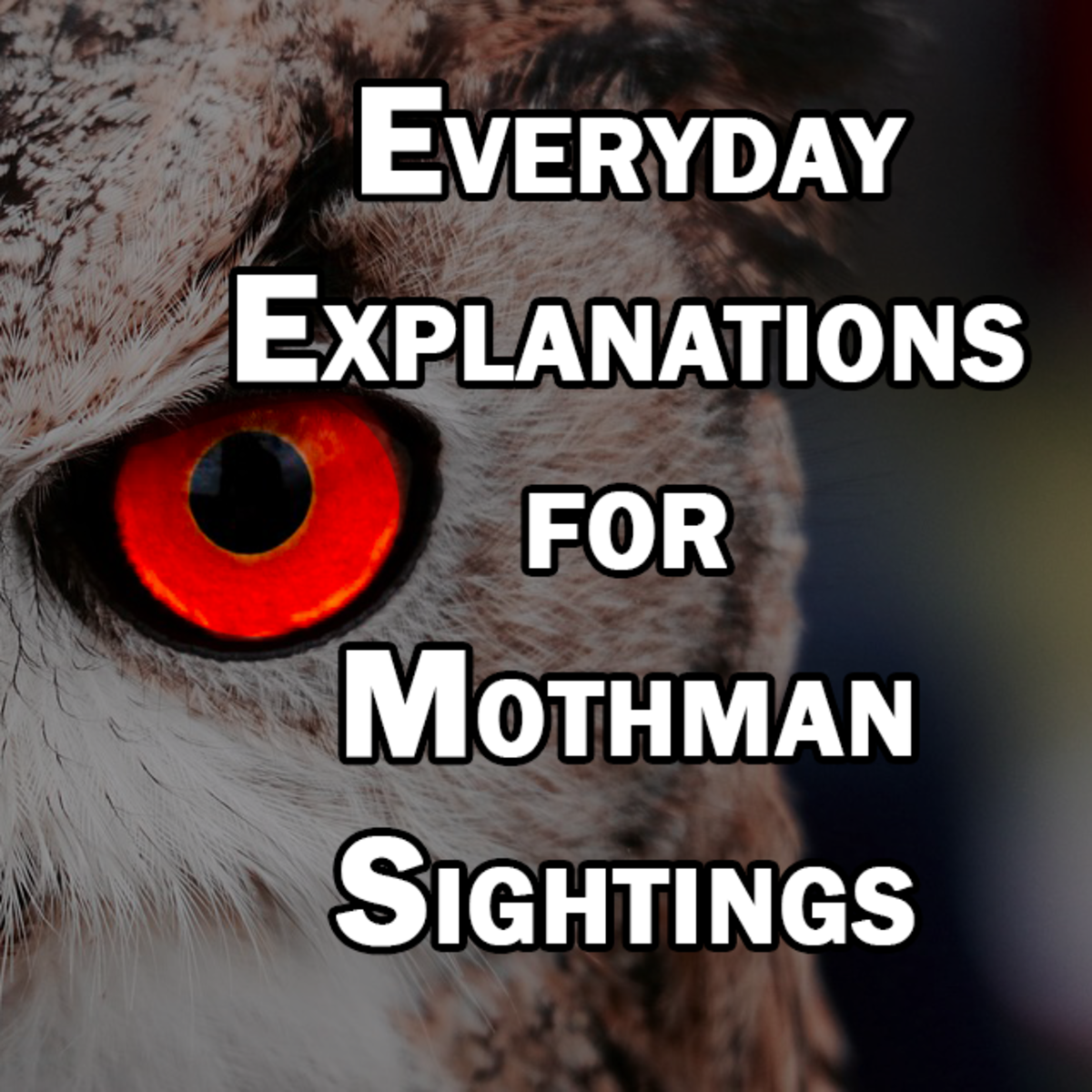 What is Mothman Really? Everyday Explanations for Mothman Sightings
