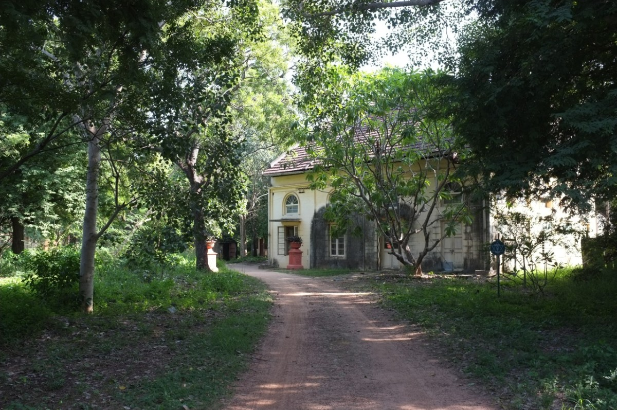 The Top 3 Parks and Gardens to Visit in Adyar
