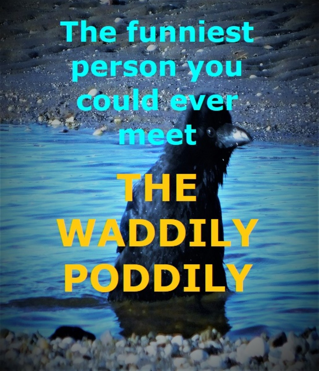 the-waddily-poddily-a-childrens-poem