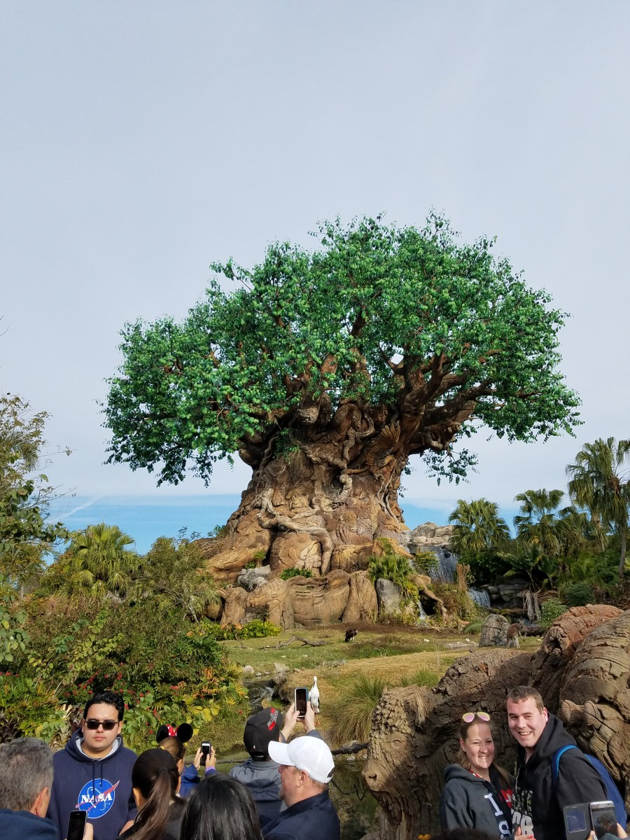 "Experience Walt Disney World as a ""Kid at Heart"" at Animal Kingdom"