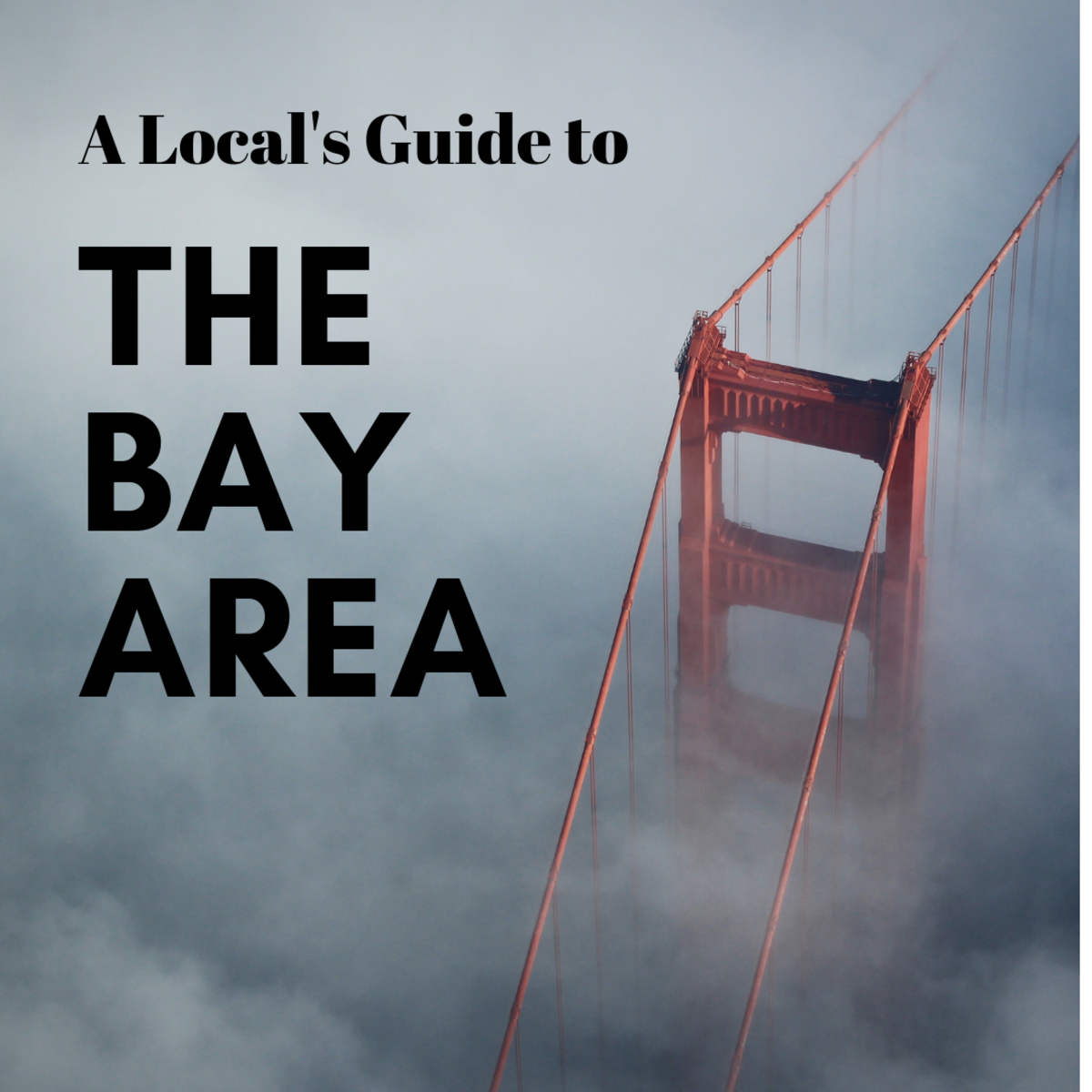 A Local's Guide to Visiting Silicon Valley and the Bay Area: Attractions, Culture, Tech, & Nature