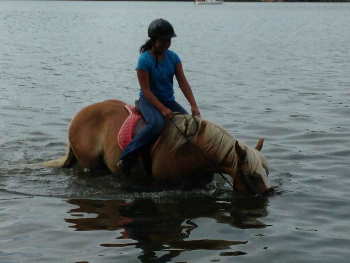 Dunkin loves to swim