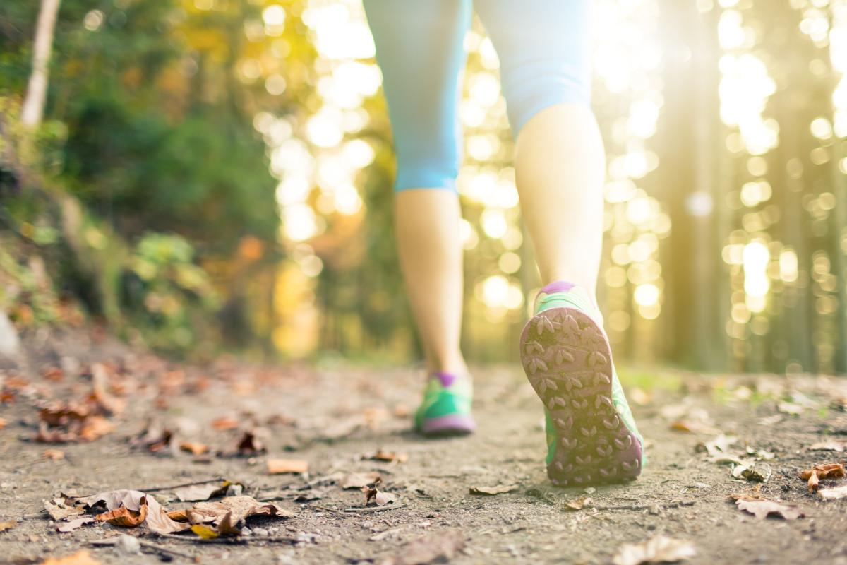 Choose the Perfect Walking Shoe