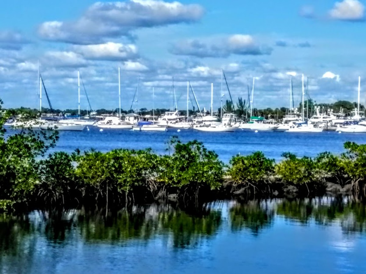 Shepard Park, Stuart, Florida