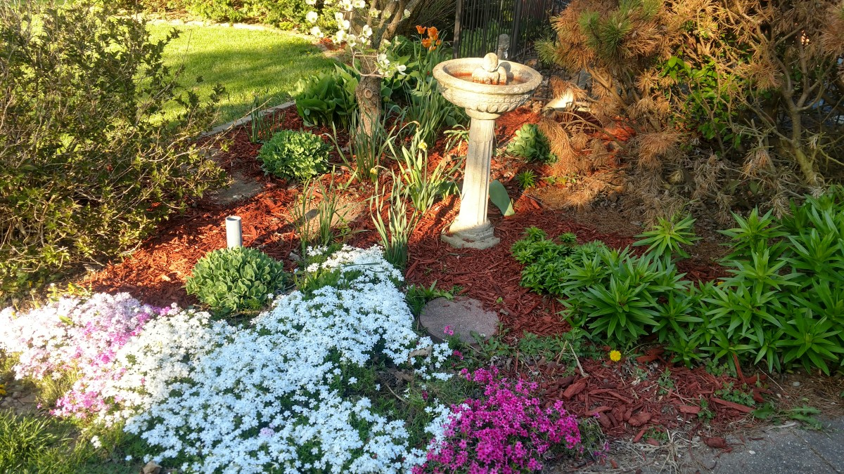 tending-the-garden