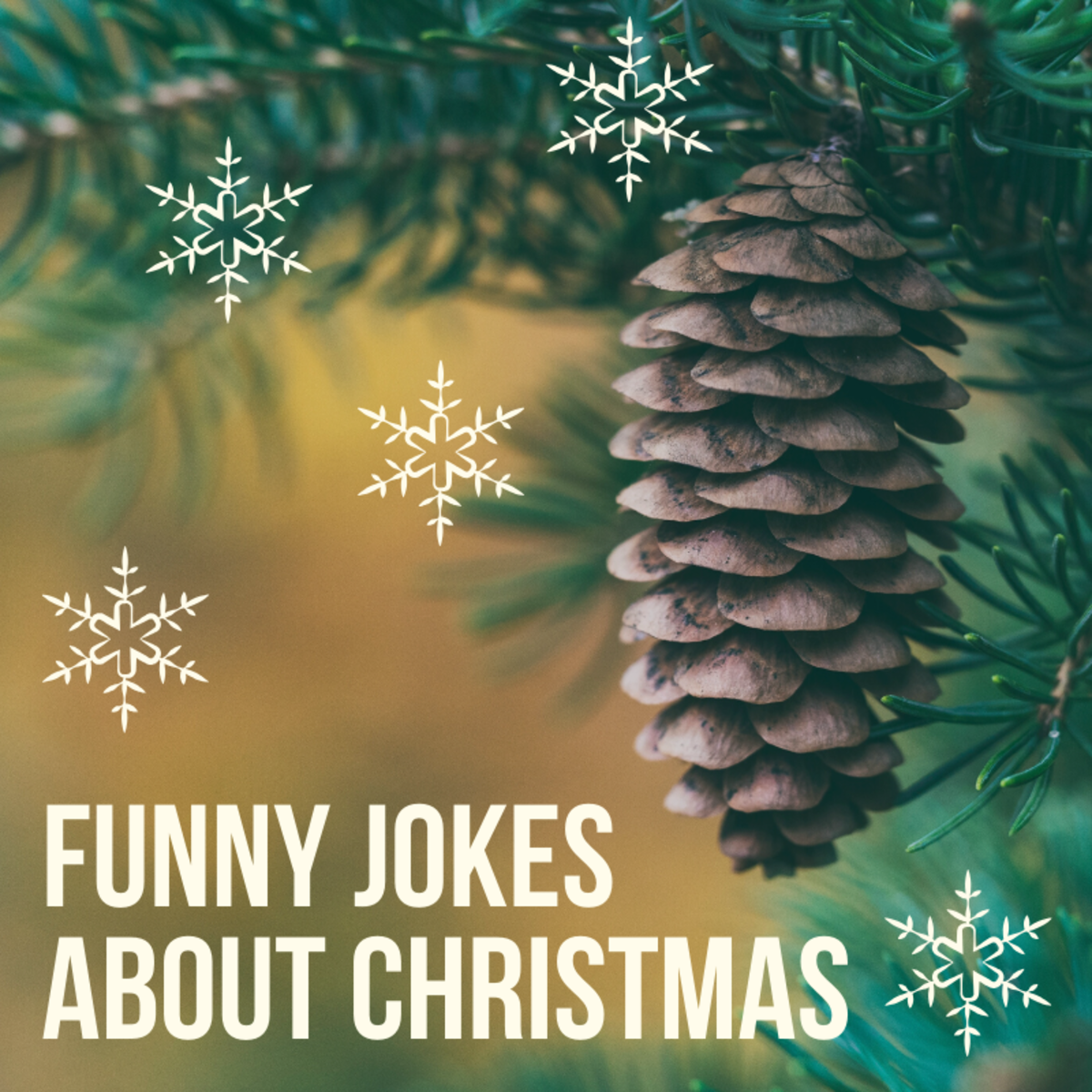Here's a large collection of Christmas-themed jokes and gags meant to entertain and amuse.