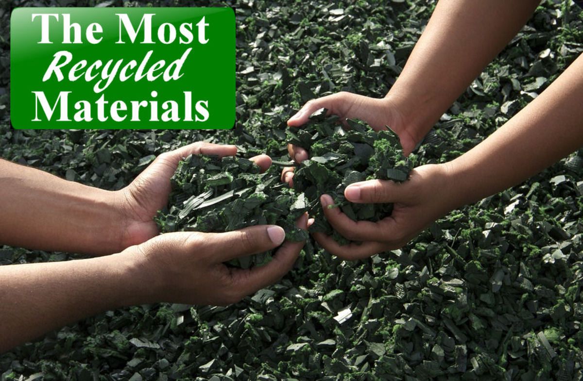 Top 10 Most Recycled Materials: Lists and Examples