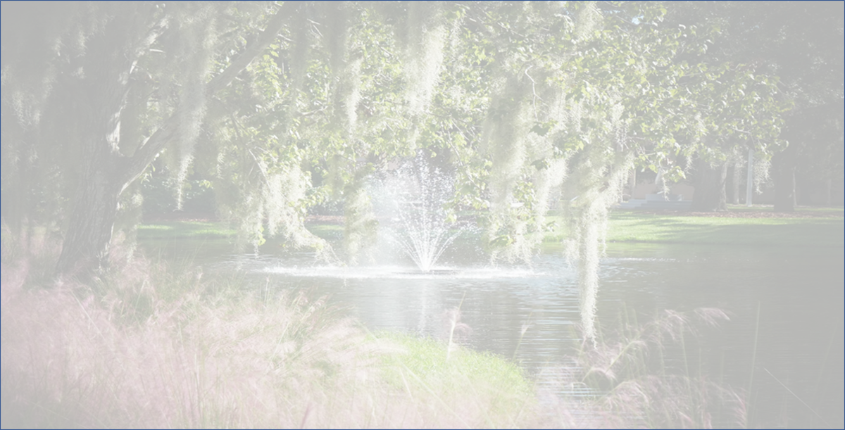 This is a photo of a fountain on the grounds of the Ringling Museum in Sarasota Florida. The transparency of the photo was changed so it could be used as a background of a project.