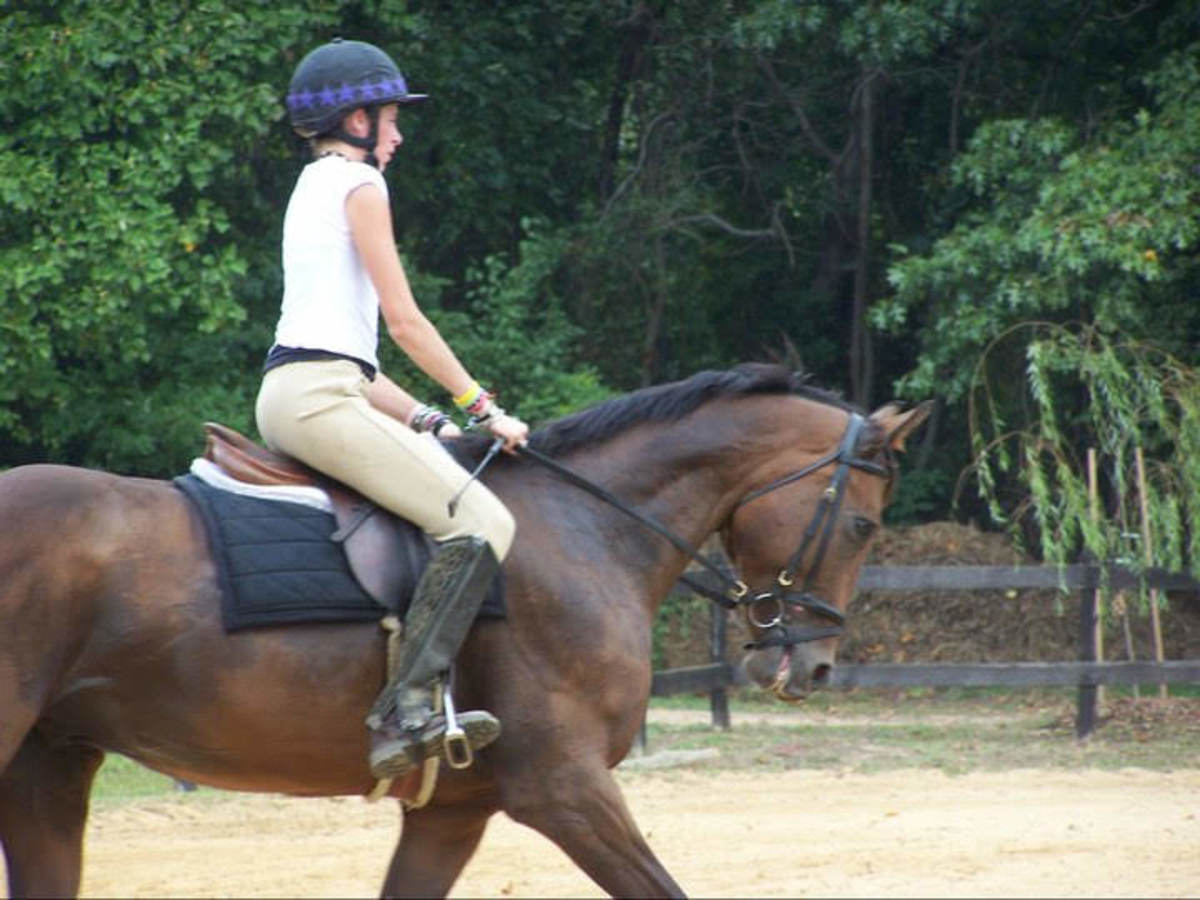The square exercise helps you to ride the whole horse and reminds the horse to move off your outside leg.