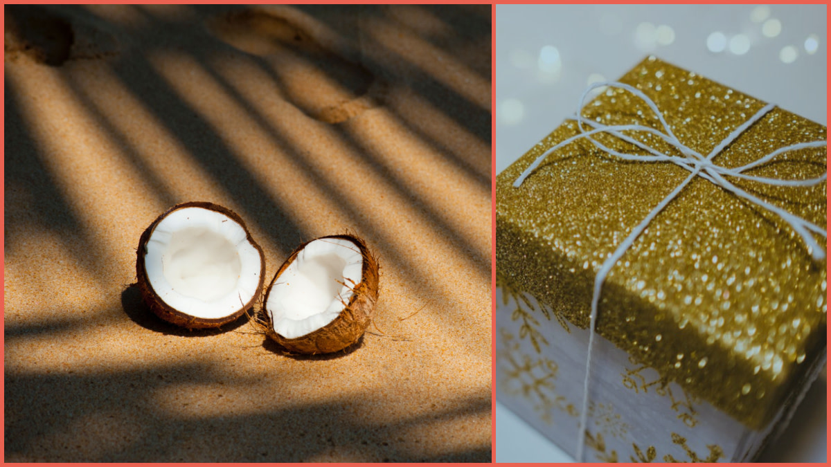 The Saga of the Christmas Coconut