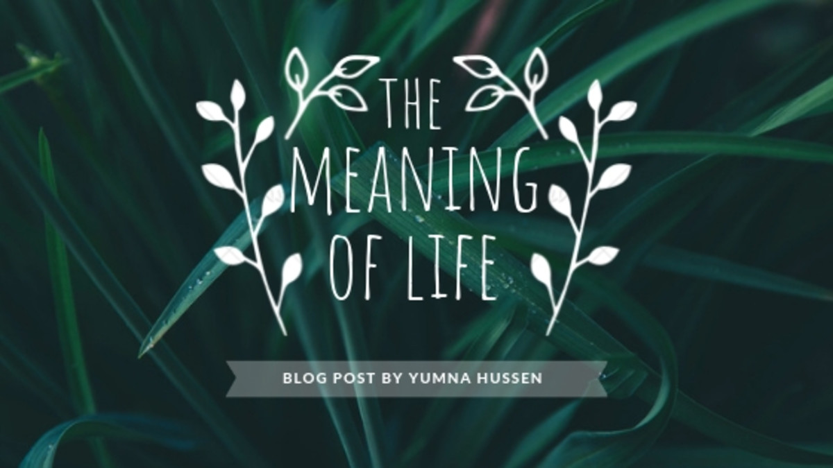 The Meaning Of Life - Poem by Yumna Hussen