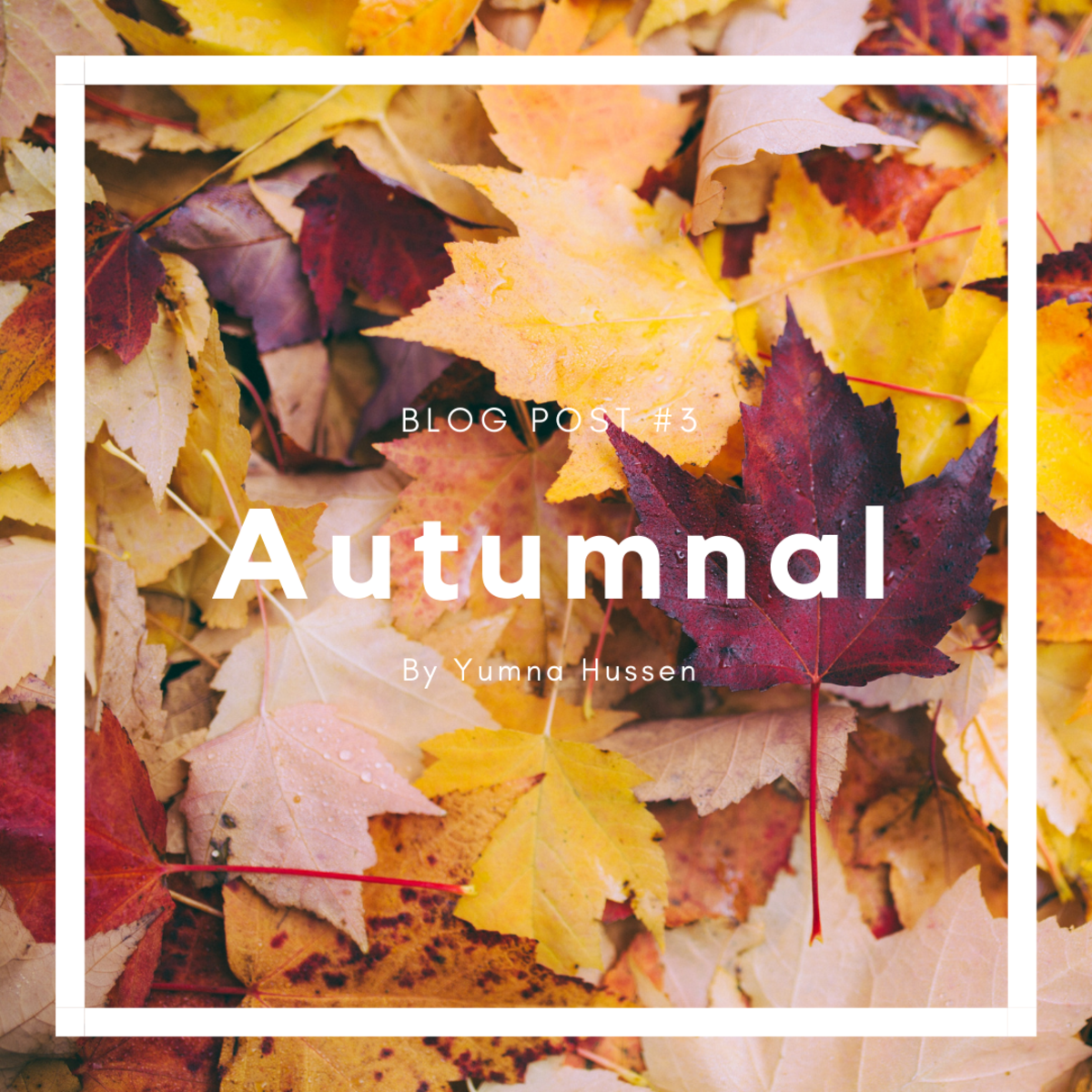 Autumnal - Creative Writing