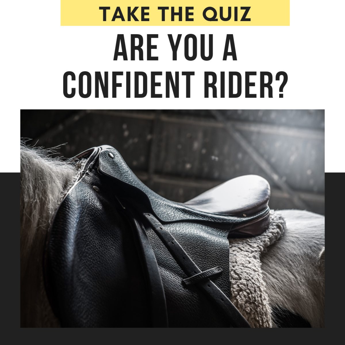 How Confident of a Rider Are You?