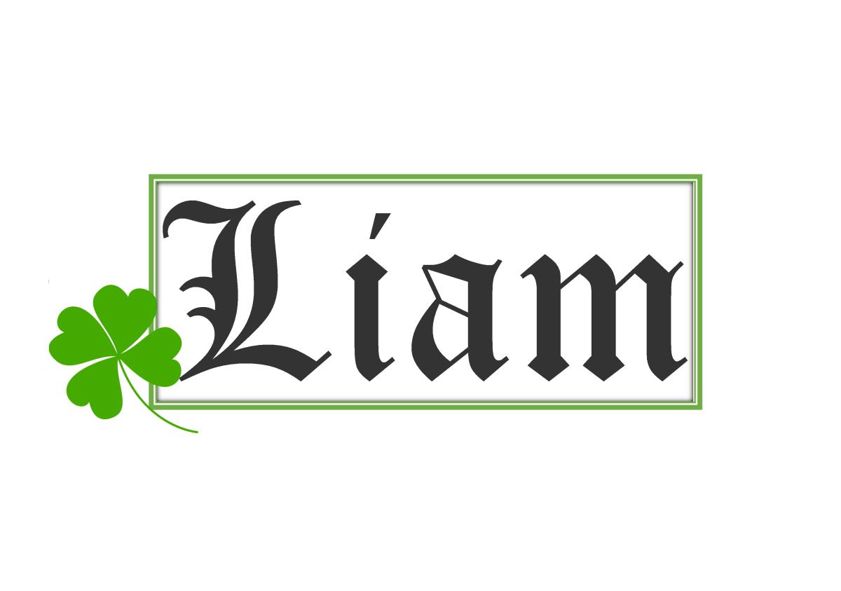 The Origin of the Name Liam