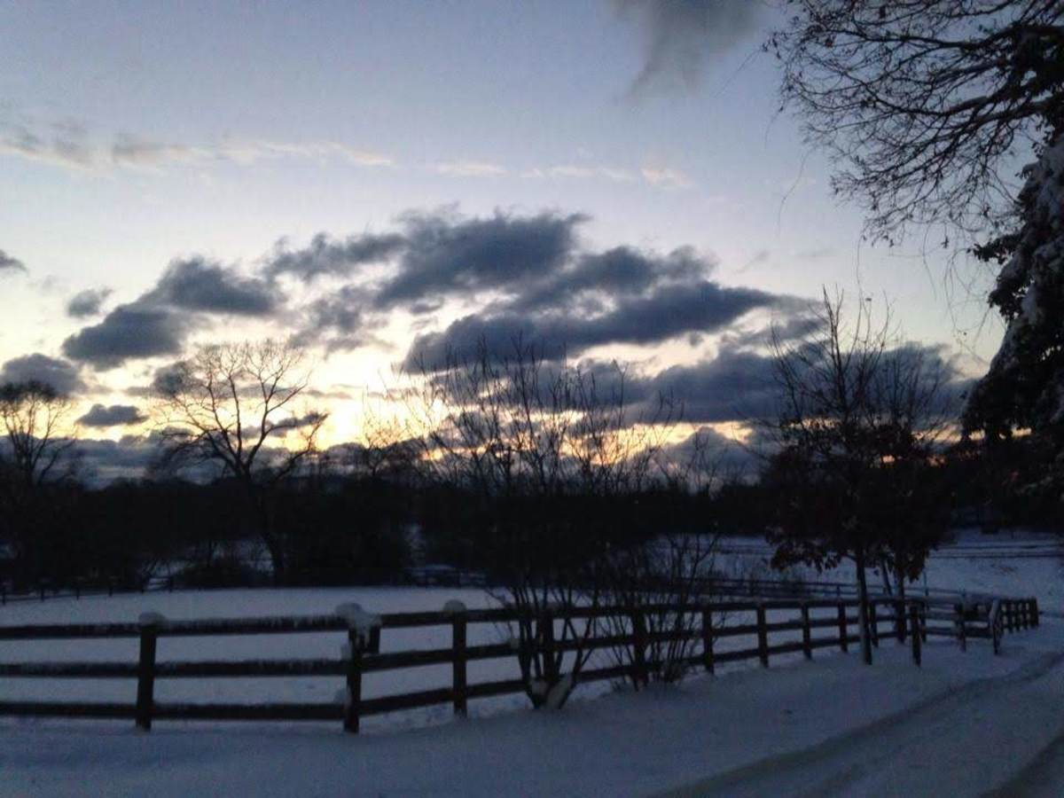 26 Reasons to Not Quit Horseback Riding Lessons in the Winter