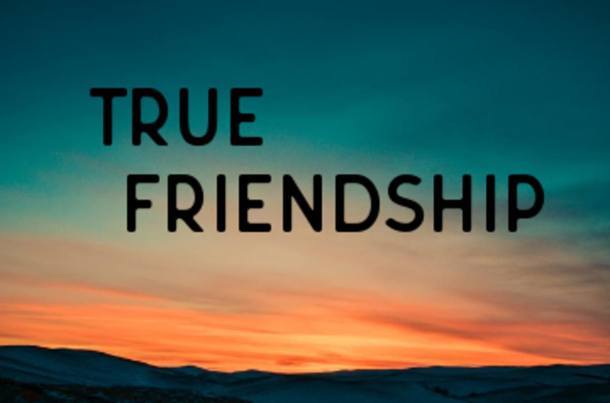 Poem:  True Friendship