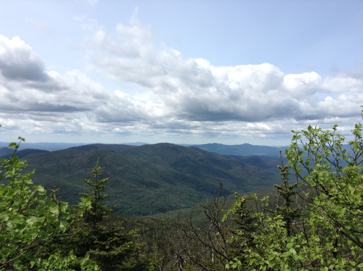 Adirondack Hike: Mount Marshall