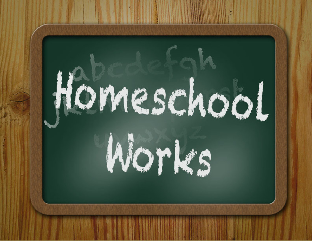 Benefits of Homeschooling My Children Examined