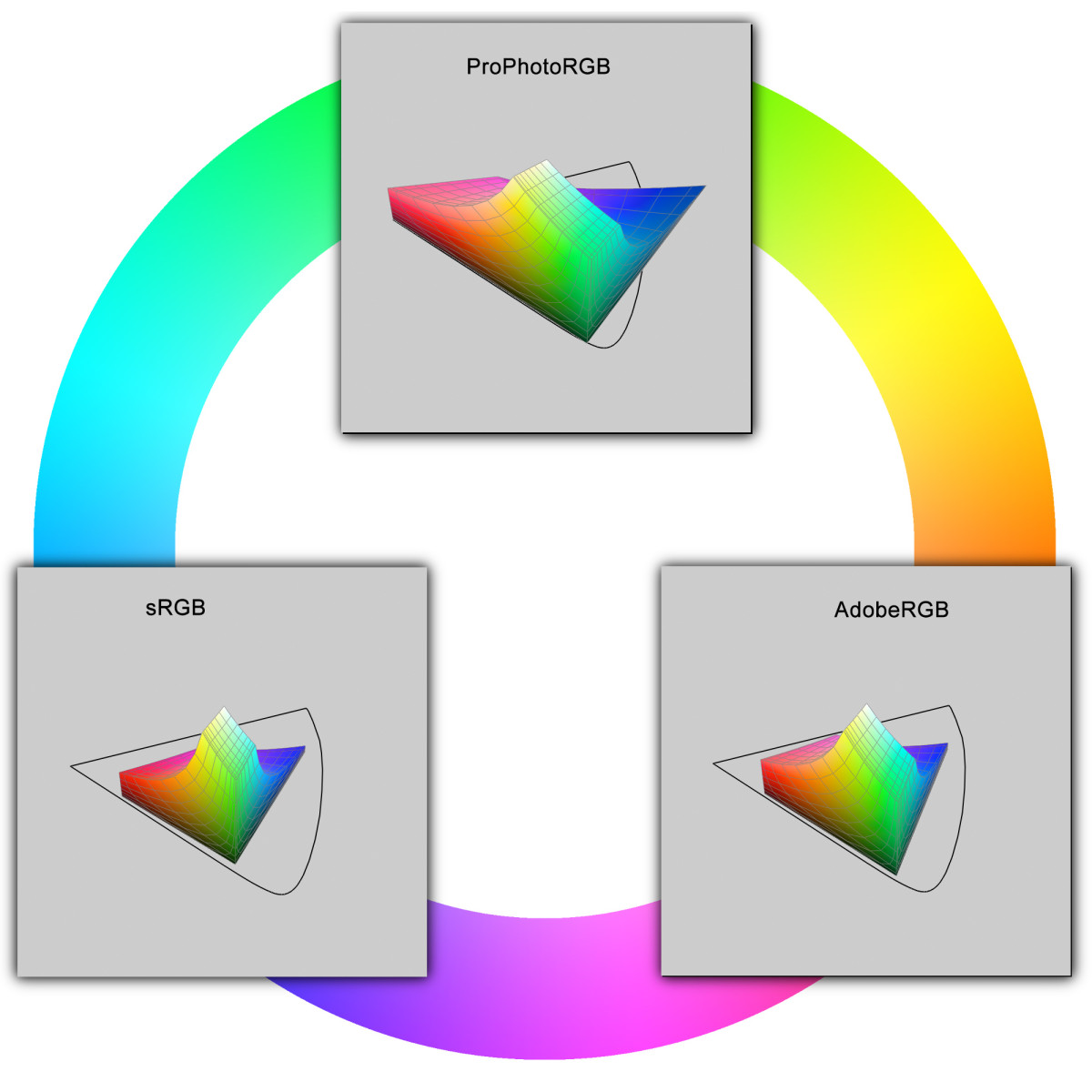 A graphical representation of sRGB, AdobeRGB and ProPhotoRGB colour spaces