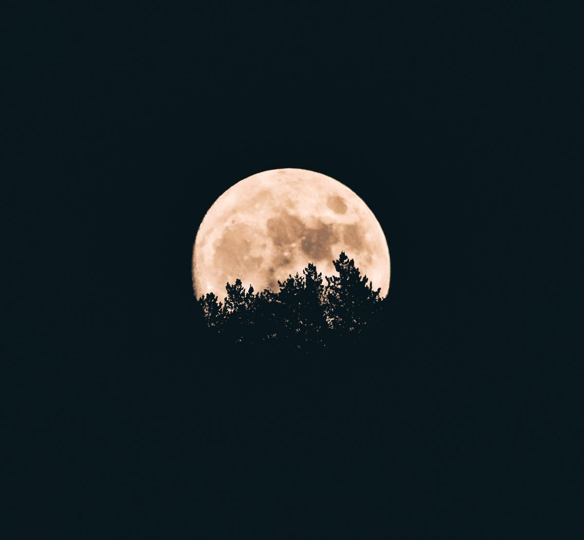 Full Moon shining brightly in the sky. Photo by Aron Visuals on Unsplash.