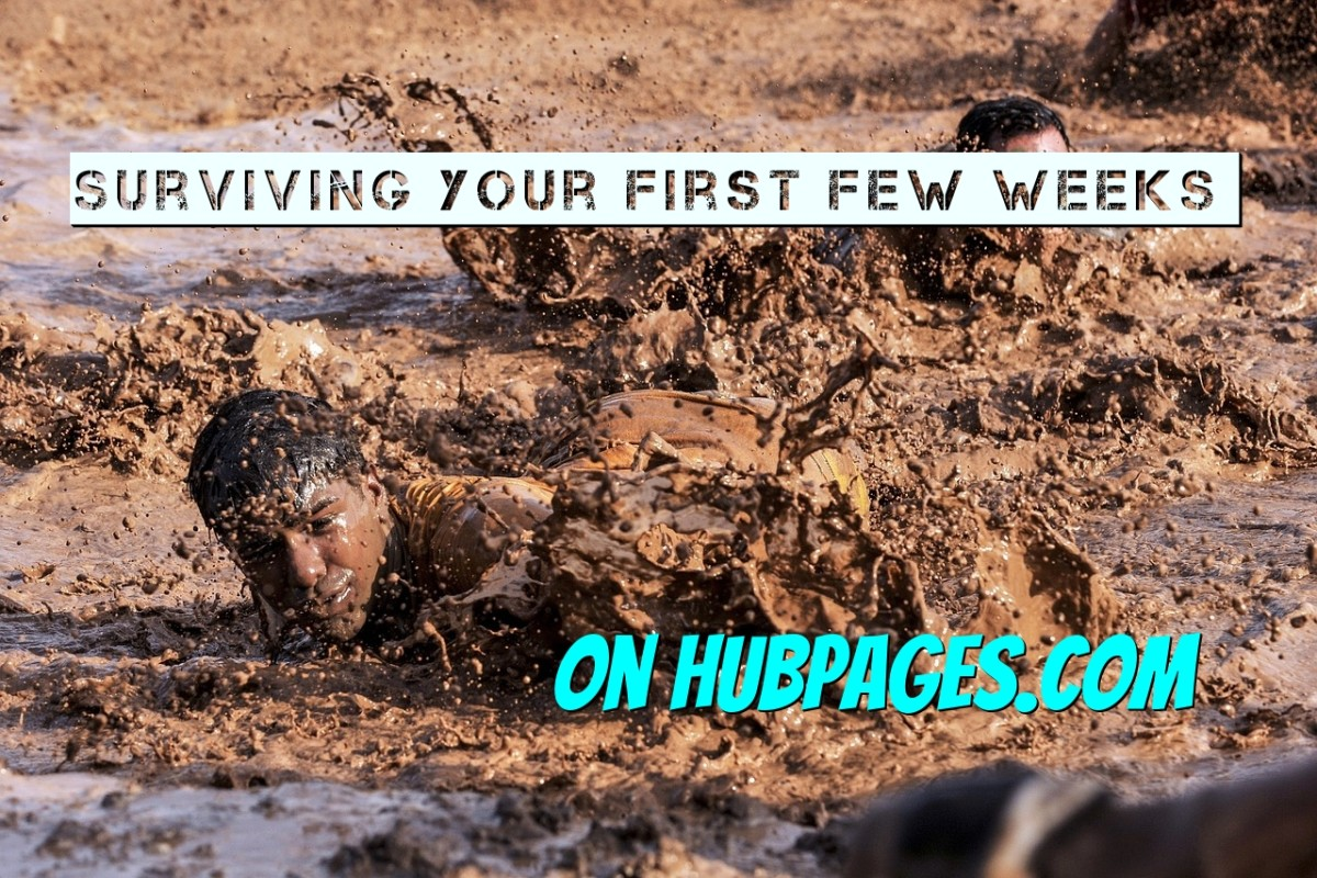 Make Money Online with HubPages: How to Write Articles That Pass QAP