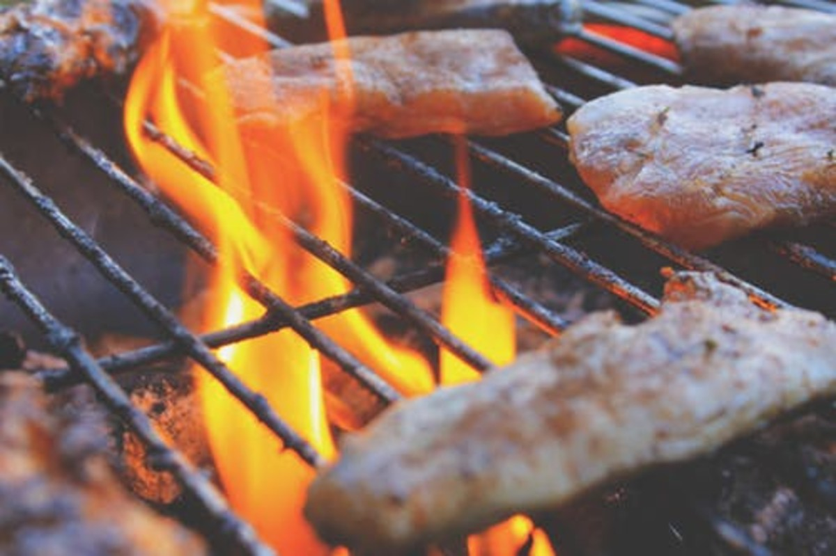 """Accidental  Grill Fire: """"Number Two Enemy of Picnics."""""""