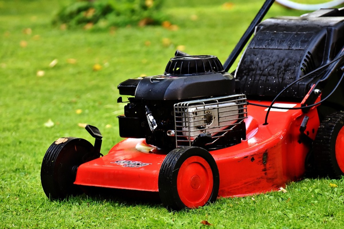How to Tune up Your Old Lawn Mower so It Runs Like New