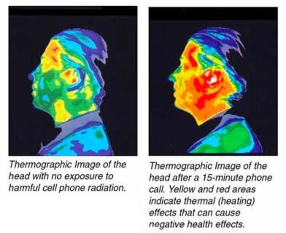 It is well know that a cell phone will cause nearby parts of the human body to heat up.  This image graphically demonstrates the heating effect of a cell phone on a human head.