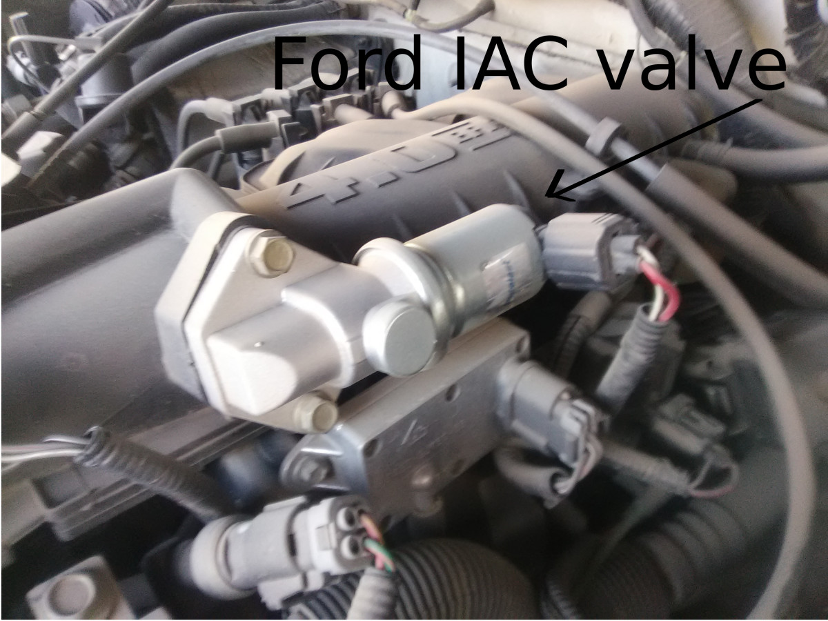 Ford IAC valve.