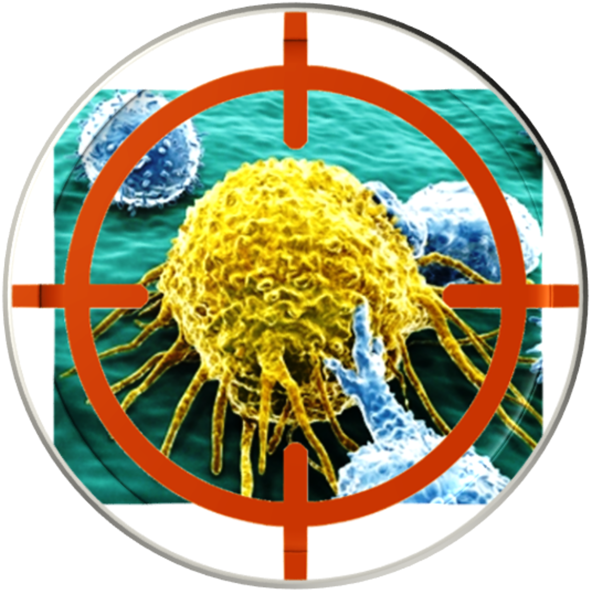 Targeted cancer therapy is a type of cancer treatment that targets the changes in cancer cells and selectively kill cancer cells with more precision and fewer side effects.