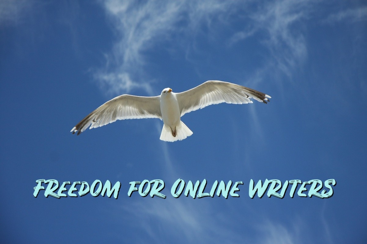 HubPages gives writers like me the freedom to make our own hours and to choose topics we care about.