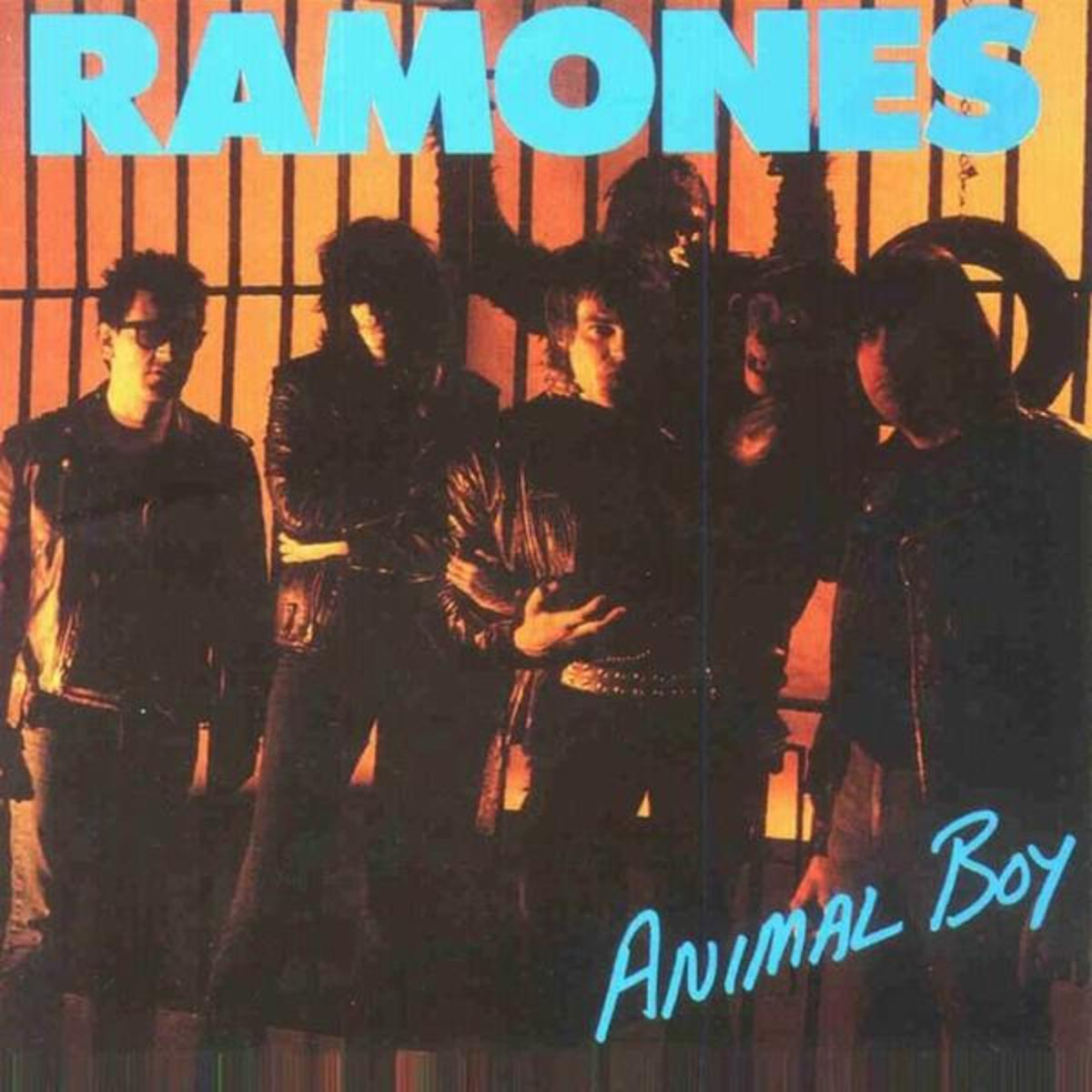 """Animal Boy"" CD cover"