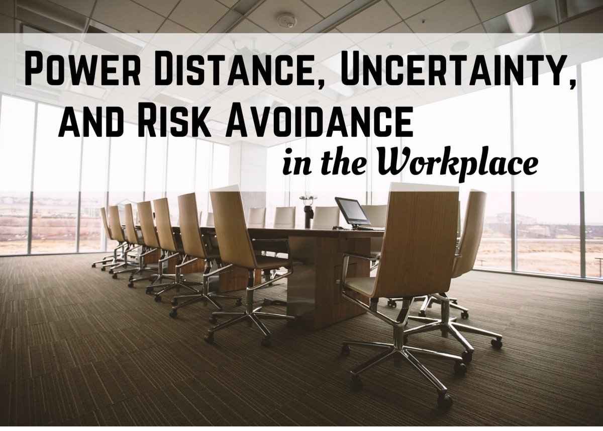 Workplace: Power Distance, Uncertainty, and Risk Avoidance