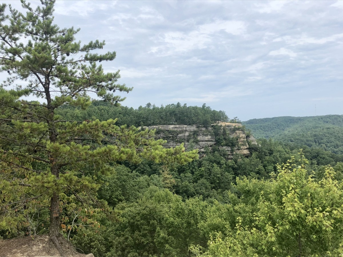 This is one of the many views in the Red River Gorge Geological Area in Kentucky. View from the Natural Bridge Area, looking outward.