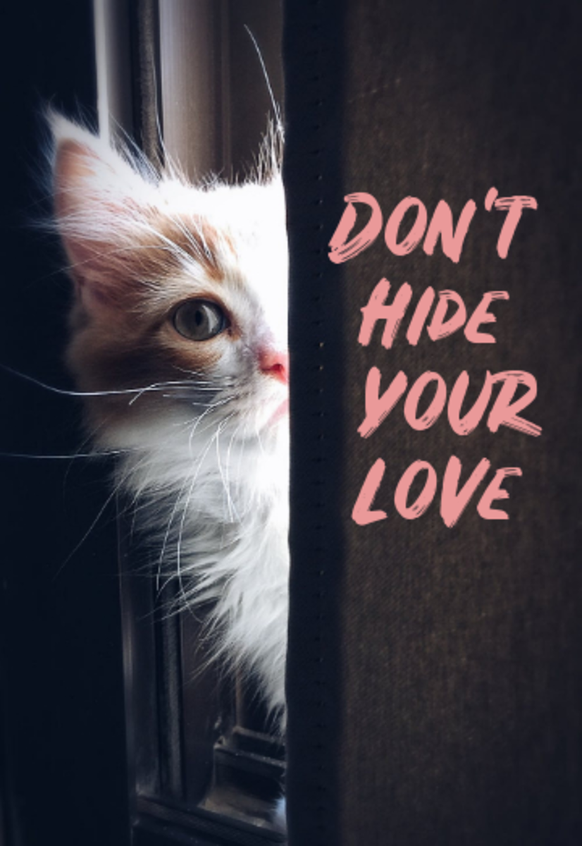 poem-dont-hide-your-love