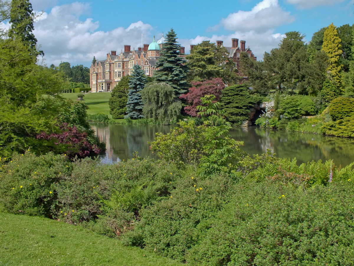 The first cases of Seasonal Canine Illness were in dogs who had been walked at the royal Sandringham estate